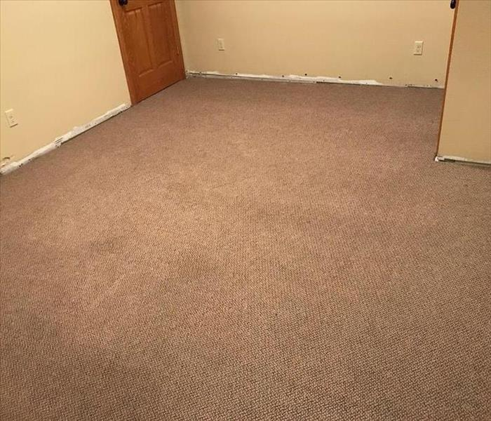 Saturated Carpet After